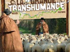 photo de Grande Transhumance