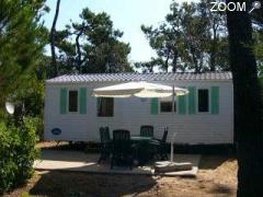 picture of CAMPING LES CHARDONS BLEUS